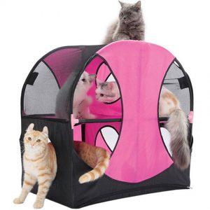 สวนสนุกแมว