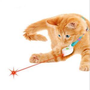 Laser แมว
