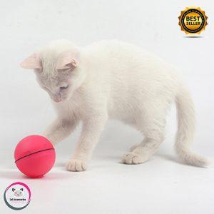 ของเล่นแมว บอลเลเซอร์