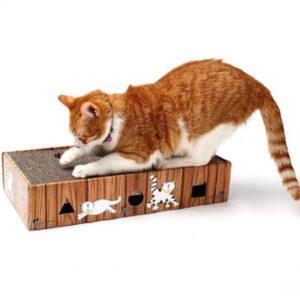 กล่องฝนเล็บแมว
